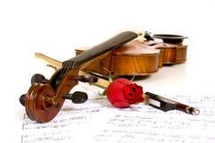 Violín, color de rosa y música imágenes de archivo libres de regalías