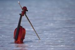 Violín en agua Foto de archivo libre de regalías