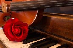 Violín, piano, y Rose Imágenes de archivo libres de regalías