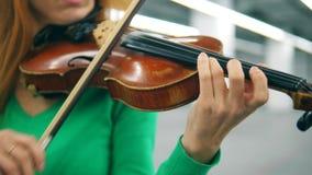 Violín y arco en las manos de un músico de sexo femenino almacen de video