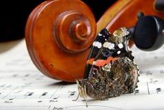 Violín y mariposa el cuello de un violín y las notas se cierran para arriba Almirante de la mariposa fotografía de archivo libre de regalías