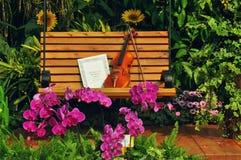 Violín y nota musical sobre banco Imagen de archivo