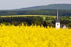 Viol de l'Allemagne Wiesbaden photo stock