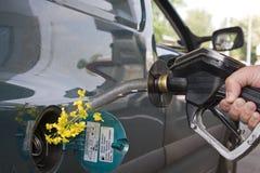 Violação com um bocal da bomba de gasolina em um statio de enchimento Foto de Stock Royalty Free