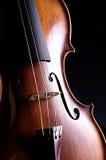 Viola del violino isolata sul nero Fotografie Stock Libere da Diritti