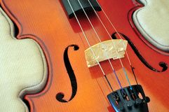 Free Viola In Case Royalty Free Stock Photo - 33334685