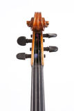 Viola Stock Images