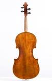 Viola Stock Image