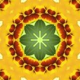 viola Nahtloses Muster für Hintergrund, Tapeten Vektor Abbildung