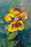 Viola with rain drops. Viola tricolor hortensis with rain drops, flower garden, oil painting on canvas, summer, sunny, picturesque stock illustration