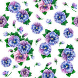 Viola tricolor. Watercolor colorful pansies flowers drawing. Watercolor seamless flowers pattern Stock Photo