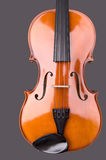Viola or violin. Isolated against gray background royalty free stock images