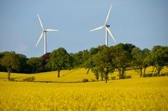 Violación y energía eólica Imágenes de archivo libres de regalías