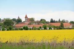 Viole los campos en la República Checa de Kutna Hora del resorte Imágenes de archivo libres de regalías