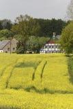 Viole o campo com casas velhas em maio, Hilter, região do país de Osnabrueck, Alemanha Fotos de Stock