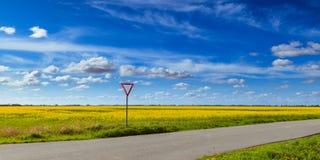 Viole o campo e os moinhos de vento Imagem de Stock Royalty Free