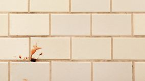 Violence on the tiled wall stock photography