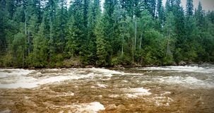 Violent river in forest stock photo