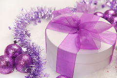Violet Stock Photography