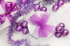 Violet Royalty Free Stock Images