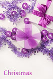 Violet Royalty Free Stock Image