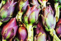 Violet artichokes background Stock Photo