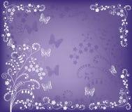 Violet_background Stock Image