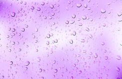 Violet   background. Abstract  violet  color background with drop water Stock Images