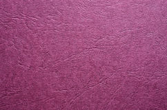 Violet background Royalty Free Stock Photography