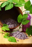 Violet bath salts and a green twig vines. Stock Image