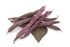 Violet bean on white Royalty Free Stock Photography