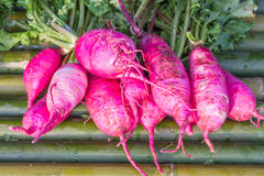 The violet Beetroot on bamboo shelf. Royalty Free Stock Photos