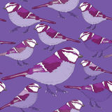Violet birds seamless pattern. Vector illustration on lila background. Hand drawn violet birds with light purple feathers seamless pattern on lila background vector illustration