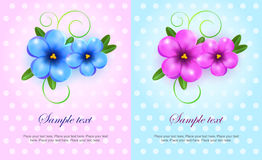 Violet and blue flowers cards Stock Photo