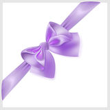 Violet bow with ribbon, located diagonally Royalty Free Stock Images