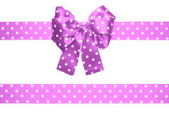 Violet bow and ribbon with white polka dots made from silk Stock Images