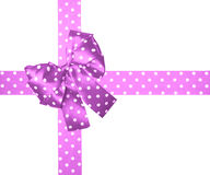 Violet bow and ribbon with white polka dots made from silk Royalty Free Stock Photos