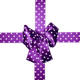 Violet bow and ribbon with white polka dots made from silk Stock Photos