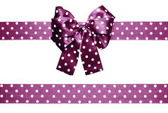 Violet bow and ribbon with white polka dots made from silk Stock Photography