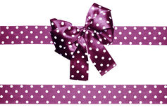 Violet bow and ribbon with white polka dots made from silk. Isolated Stock Photos