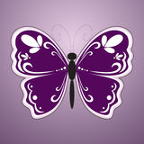 Violet butterfly Royalty Free Stock Photo