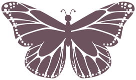 Violet butterfly Stock Image