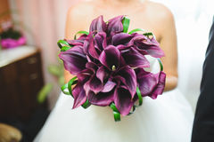 Violet Calla Bouquet Imagen de archivo