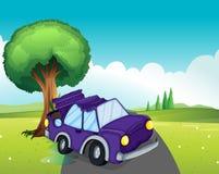A violet car bumping the big tree at the road Royalty Free Stock Photo