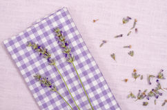 Violet checkered cloth with lavender Stock Image