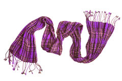 Violet checkered scarf Stock Image