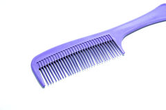 Violet Comb Stock Photo