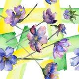 Violet cosmos flower floral botanical flower. Watercolor background illustration set. Seamless background pattern. Violet cosmos flower floral botanical flower stock illustration