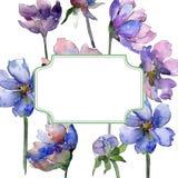 Violet cosmos flower floral botanical flowers. Watercolor background illustration set. Frame border ornament square. Violet cosmos flower floral botanical vector illustration