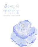 Violet crystal rose Royalty Free Stock Images